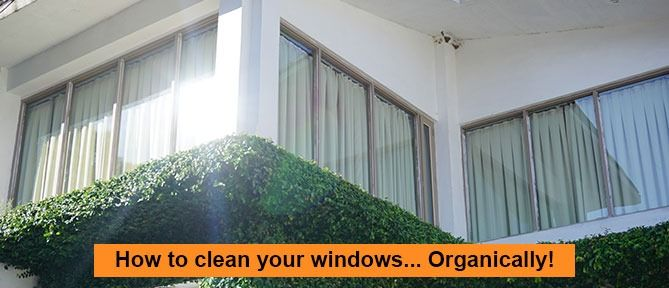example of how to clean your windows organically